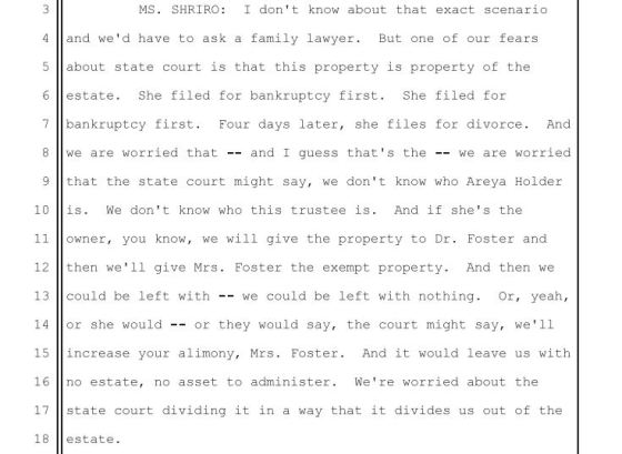 page-17-transcript-january-8-2015-hearing-bankruputcy-court-trustee-counsel-admitting-to-fear-of-state-court